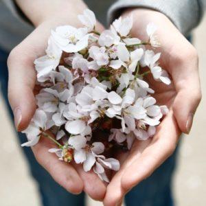 open hands giving flowers